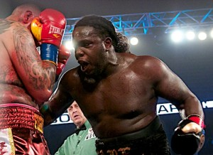stiverne%20action1
